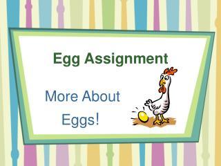 Egg Assignment