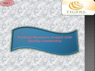 Produce Maximum Output with Quality Leadership