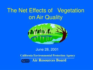 The Net Effects of Vegetation on Air Quality
