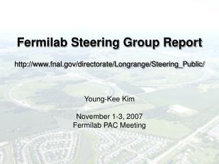 Fermilab Steering Group Report http://www.fnal.gov/directorate/Longrange/Steering_Public/ Young-Kee Kim November 1-3, 20