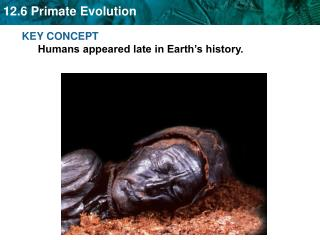 KEY CONCEPT  Humans appeared late in Earth s history.