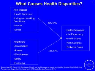 What Causes Health Disparities?
