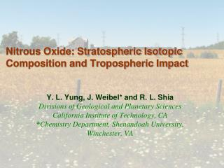 Nitrous Oxide: Stratospheric Isotopic Composition and Tropospheric Impact