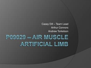 P09029 – Air Muscle Artificial Limb
