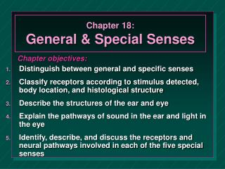 Chapter 18:  General & Special Senses