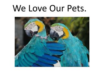 We Love Our Pets.