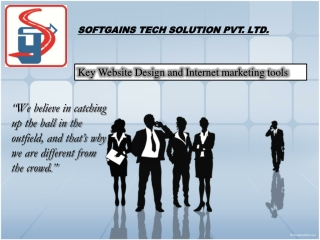 Web Development, SEO, BULK SMS, Emails -SoftGains Tech Solut