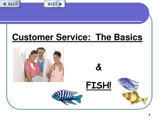 Customer Service:  The Basics