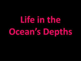 Life in the Ocean's Depths