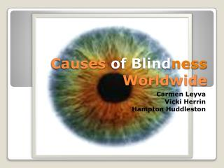 Causes  of Blind ness Worldwide