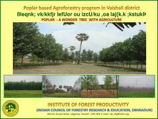 Poplar based Agroforestry program in Vaishali district ßleqnk; vk/kkfjr lefUor ou izcU/ku ,oa laj{k.k ;kstukÞ POPLAR -