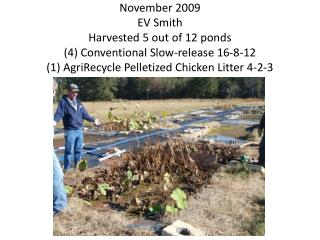 November 2009 EV Smith Harvested 5 out of 12 ponds (4) Conventional Slow-release 16-8-12 (1) AgriRecycle Pelletized Chic