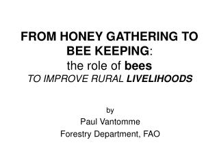 FROM HONEY GATHERING TO BEE KEEPING : the role of bees TO IMPROVE RURAL LIVELIHOODS