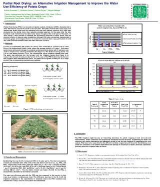 Partial Root Drying: an Alternative Irrigation Management to Improve the Water Use Efficiency of Potato Crops