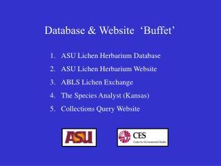 Database & Website  'Buffet'