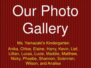 Our Photo Gallery