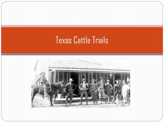 Texas Cattle Trails