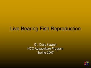 Live Bearing Fish Reproduction