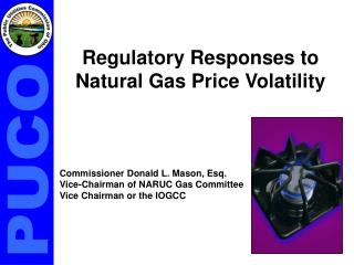 Regulatory Responses to Natural Gas Price Volatility