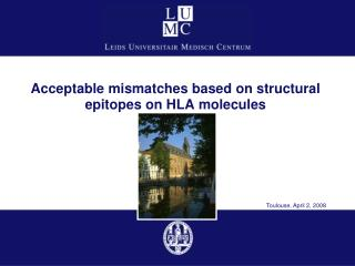 Acceptable mismatches based on structural epitopes on HLA molecules