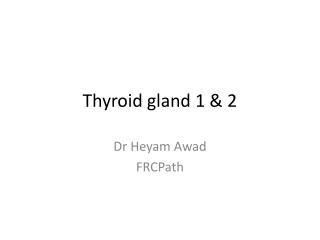 Thyroid gland 1 & 2