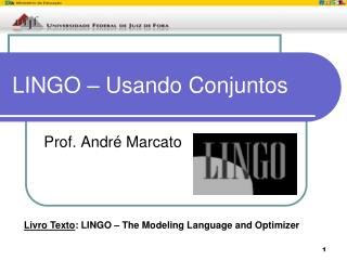 LINGO – Usando Conjuntos