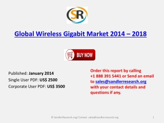 Analysis for Wireless Gigabit Industry Outlook to 2018