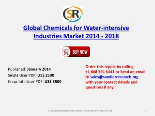 Global Chemicals for Water-intensive Industries