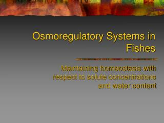 Osmoregulatory Systems in Fishes