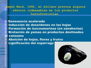 Según Reid, 1992, el etileno provoca algunos efectos indeseables en los productos hortofrutícolas. Senesencia acelerada