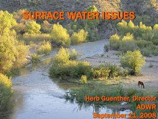 SURFACE WATER ISSUES