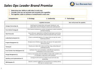 Sales Ops Leader Brand Promise