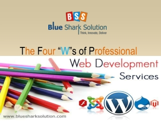 The four Ws of professional web development services: