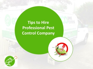Advanced pest control in Adelaide