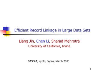 Efficient Record Linkage in Large Data Sets
