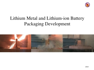 Lithium Metal and Lithium-ion Battery Packaging Development