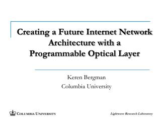 Creating a Future Internet Network Architecture with a Programmable Optical Layer