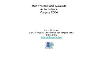 Multifractals and Wavelets in Turbulence Cargese 2004