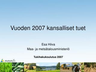 Vuoden 2007 kansalliset tuet