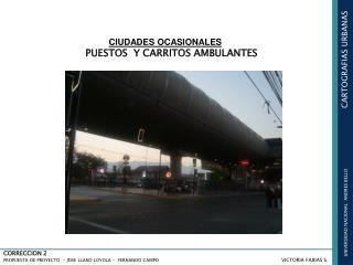 UNIVERSIDAD NACIONAL ANDRES BELLO CARTOGRAFIAS URBANAS