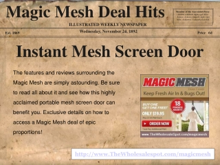 magic mesh - the instant portable mesh screen door