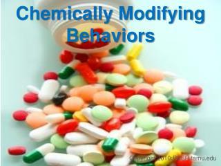 Chemically Modifying Behaviors