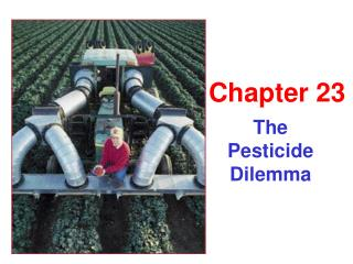 The  Pesticide Dilemma