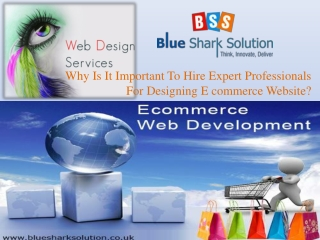 important to hire expert professional for ecommerce website