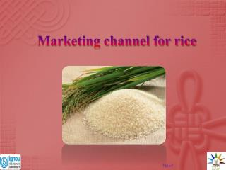 Marketing channel for rice