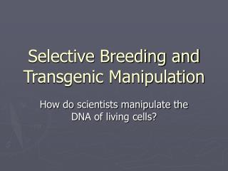 Selective Breeding and Transgenic Manipulation