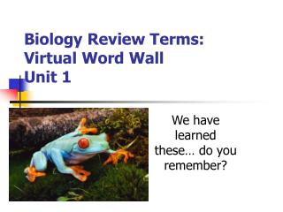 Biology Review Terms: Virtual Word Wall Unit 1