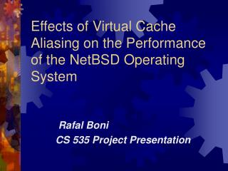 Effects of Virtual Cache Aliasing on the Performance of the NetBSD Operating System