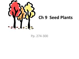 Ch 9  Seed Plants