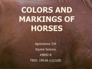 COLORS AND MARKINGS OF HORSES
